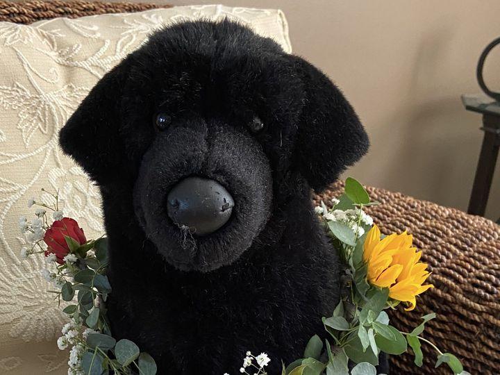 Tmx Img 0402 51 649159 160529090748196 Kingston, Massachusetts wedding florist