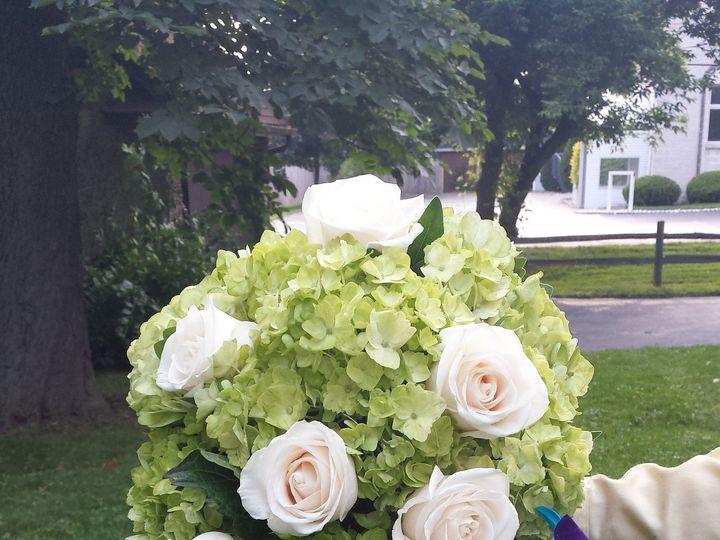 Tmx 1463771261487 20150625185820 Buffalo, NY wedding florist