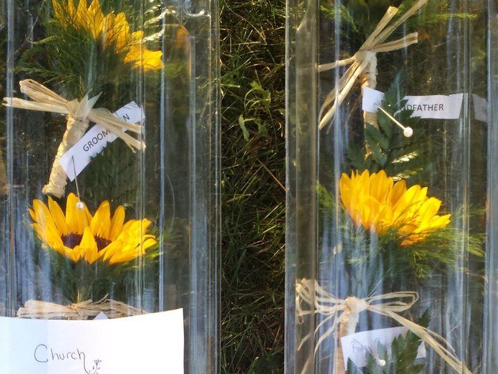 Tmx 1463771410931 20150807191843 Buffalo, NY wedding florist