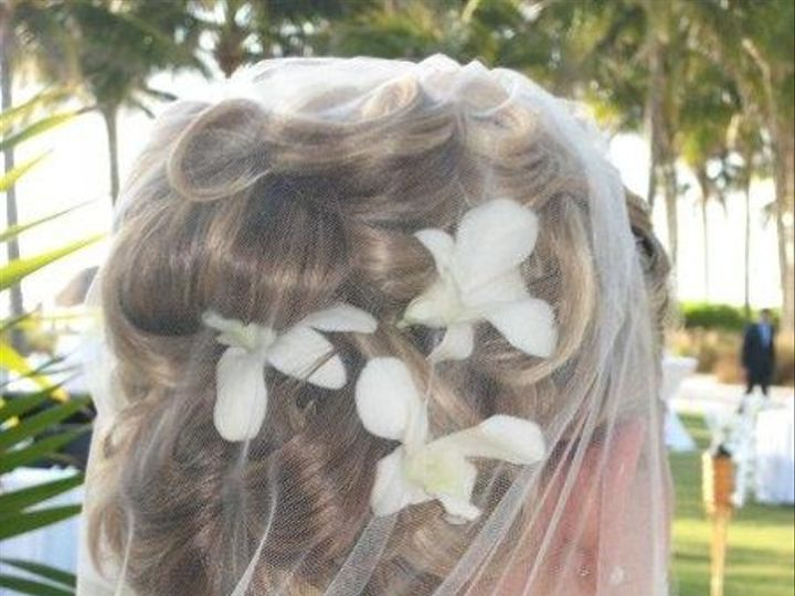 Tmx 1238789105409 Backofhair Fort Myers wedding videography