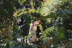 Lovely Little Weddings