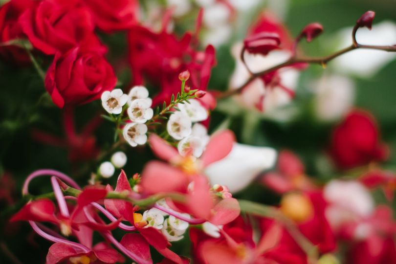 Terris Eustis Flower Shop Flowers Eustis Fl Weddingwire