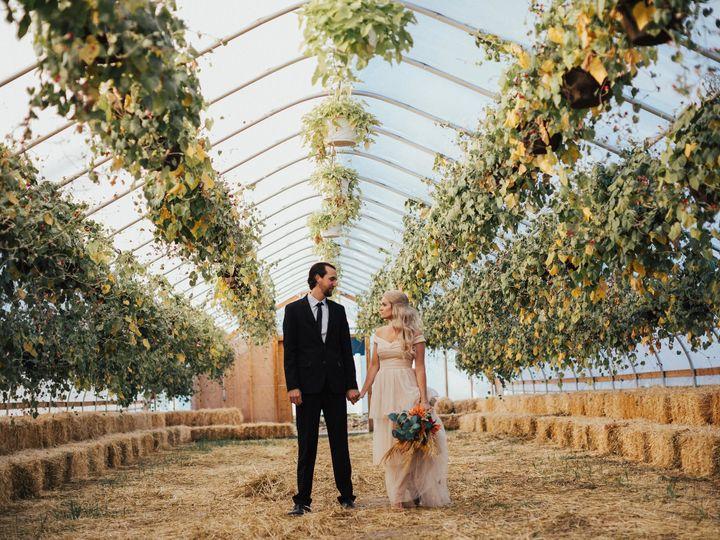 Tmx 046a8150 51 1988259 160210205268729 Chatham, IL wedding photography