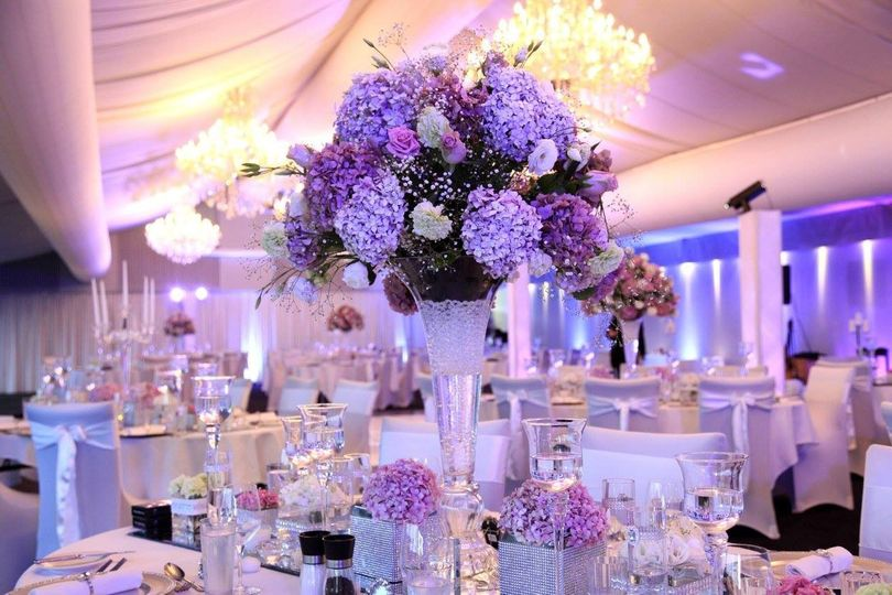 Le royal events planning bloomfield mi weddingwire 800x800 1432054352023 1104662014159260053767413302582598205433858o junglespirit Image collections