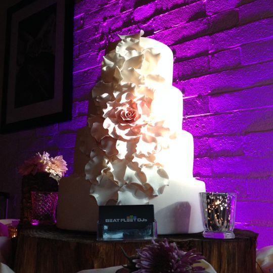 Cake in the spotlight