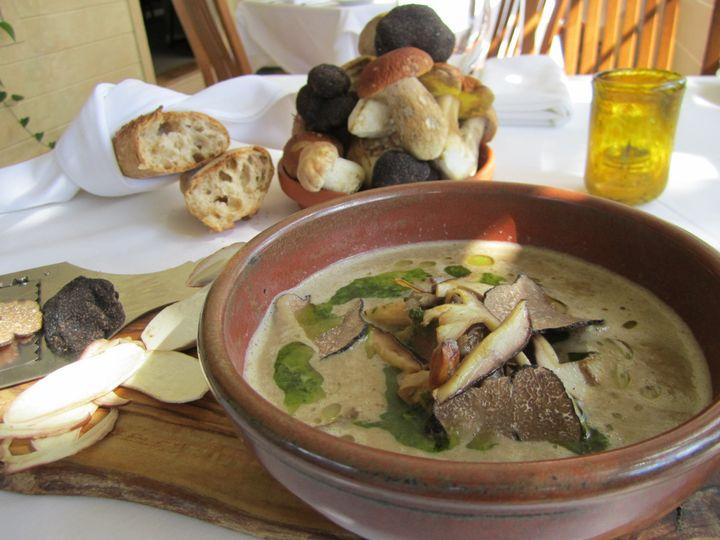 mushroom soup 1 260
