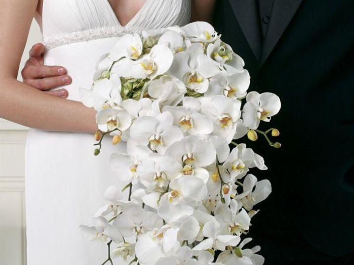Tmx 1264266750892 BW07711 Chantilly, VA wedding florist