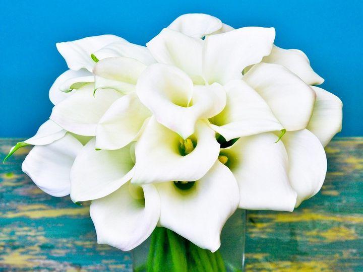 Tmx 1346084449106 DSC01442 Chantilly, VA wedding florist