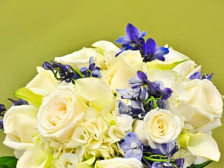 Tmx 1349977050512 Wht1 Chantilly, VA wedding florist
