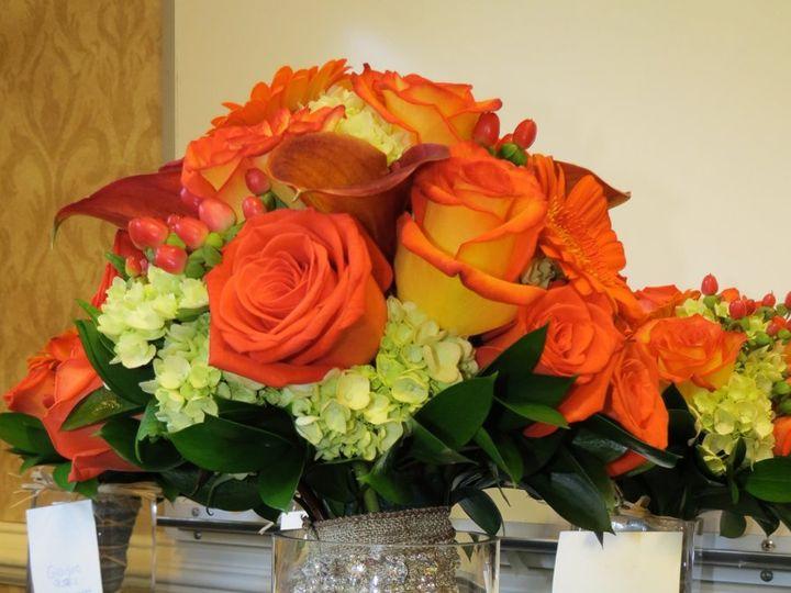Tmx 1349977631847 IMG26222 Chantilly, VA wedding florist