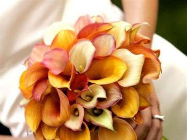 Tmx 1382391778924 Dded0281c47bb9d03653b26d76a7a778 Chantilly, VA wedding florist