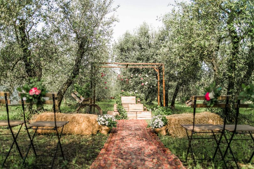 Ceremony in the Olive Groove