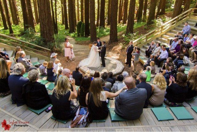 Reverend Rick Tan Officiant and Harp UC Berkeley Redwood Grove - Berkeley