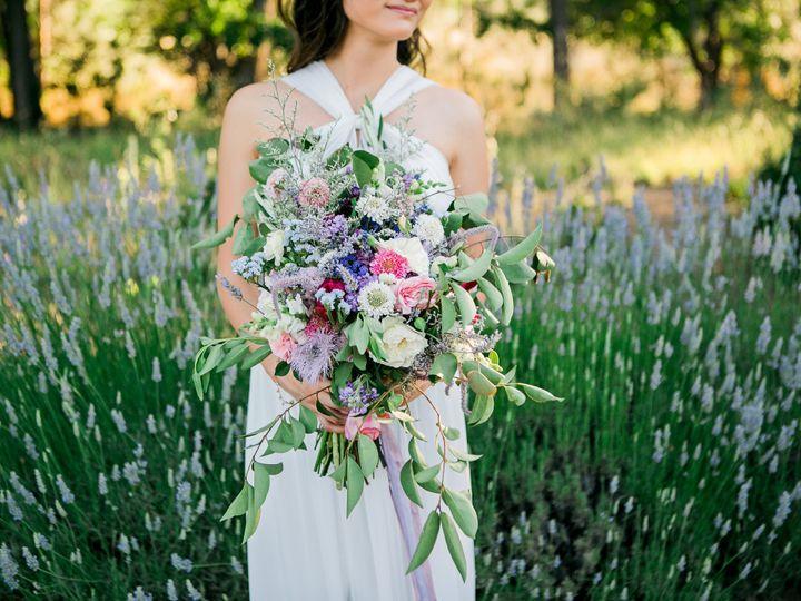 Tmx 1479699616775 019 Sacramento, California wedding officiant