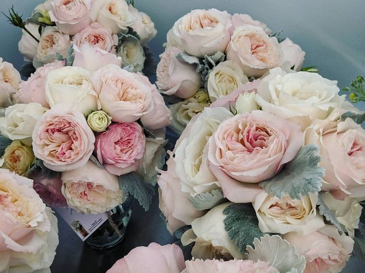 Tmx Img 20190508 201325 404 51 1037659 1573061932 Estes Park, CO wedding planner