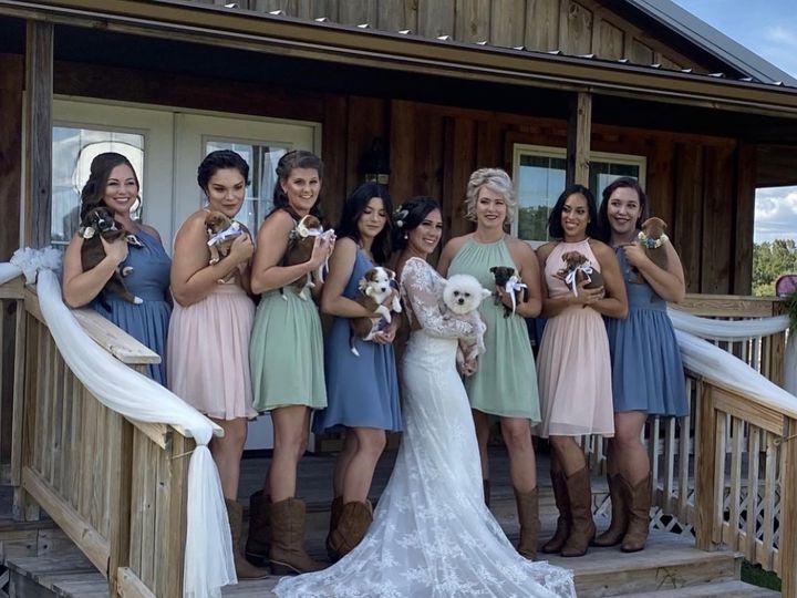 Tmx 4b0cfd98 Dc0b 4161 80bc 3bd664df5c7b 51 1001759 158052968089724 Tampa, FL wedding beauty