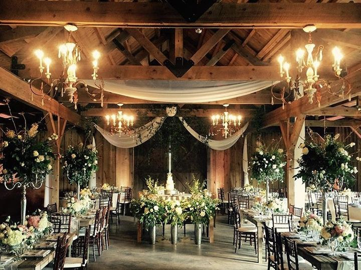 Tmx Img 4597 51 741759 160628313526902 Johnson City, TX wedding venue