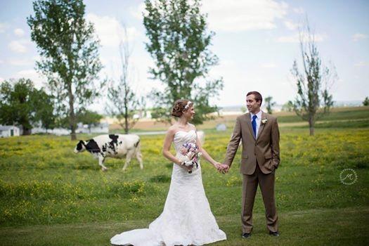 Tmx 1414089879318 10341727767836733237737841944571618248224n Strasburg, PA wedding venue