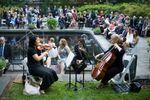 Rittenhouse String Quartet and Ensembles image