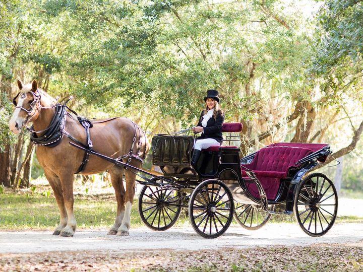 Tmx Photo Apr 16 3 56 45 Pm 51 1073759 1561340565 Arcadia, FL wedding transportation