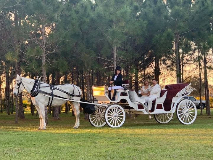 Tmx Sshc Wedding Pic 2 51 1073759 1561340400 Arcadia, FL wedding transportation