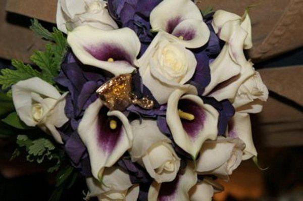 purplecallsgoldheart