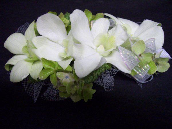 whitedenorchidcarsage