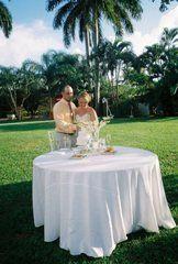 Tmx 1332090802793 Cutthatcake Waukesha wedding travel