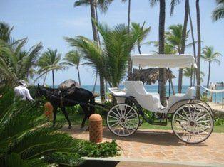 Tmx 1332090806225 CARRIAGEPUJEX Waukesha wedding travel
