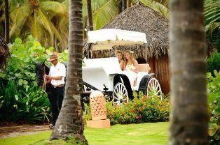 Tmx 1339123272193 Buggyride Waukesha wedding travel