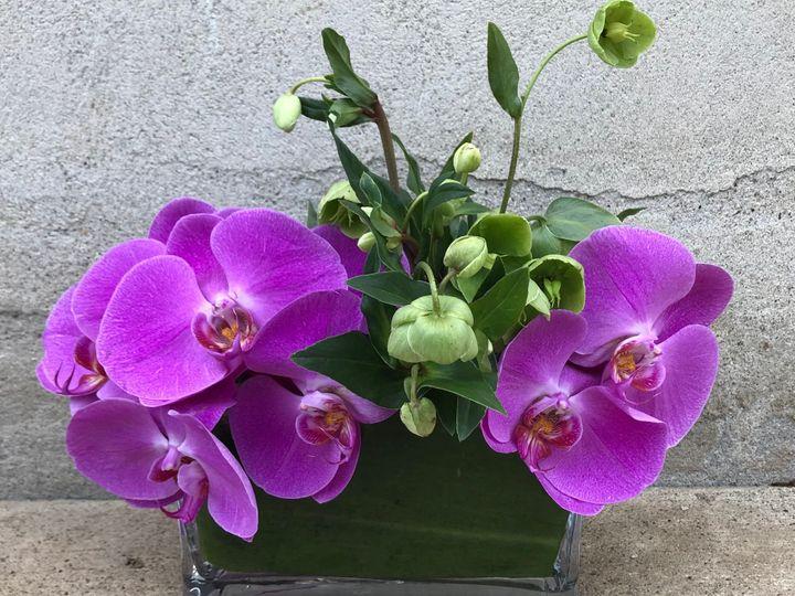Tmx Img 5342 51 1888759 1571670450 Parsippany, NJ wedding florist