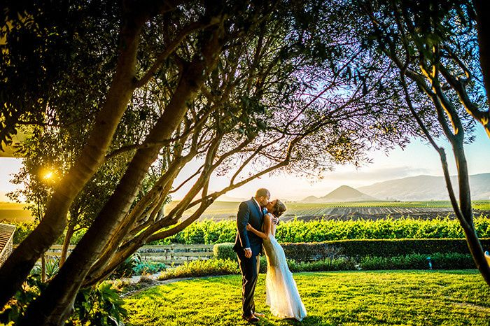 edna valley winery wedding san luis obisp