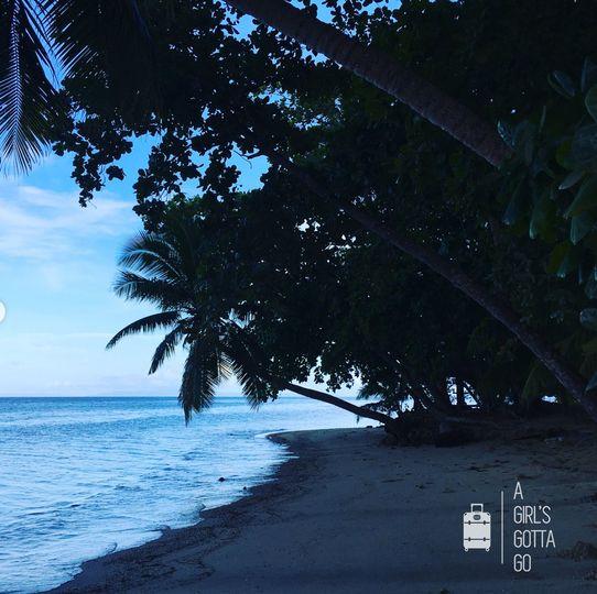 Fiji Matangi