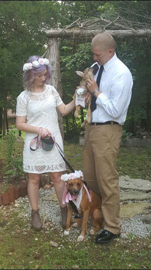 Newlyweds and their dogs