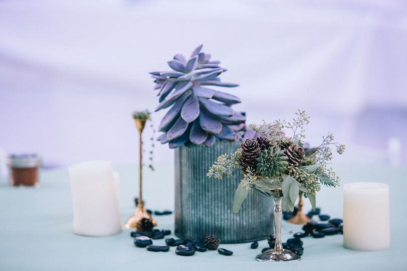 Succulents creating a beautiful tablescape