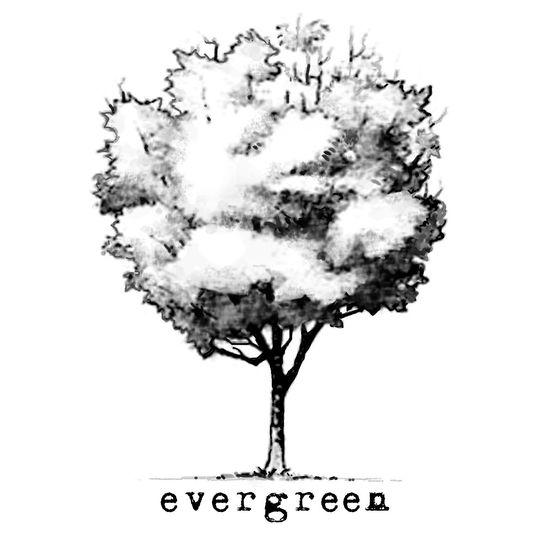 logo evergreen 2013piccolo