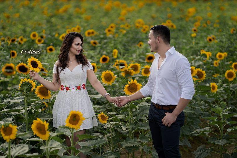 Sun flower field in GA