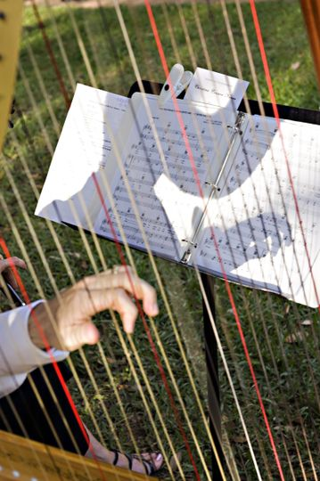 Strings of the concert harp (larger harp) carries well outdoors and along with the viola is a full...