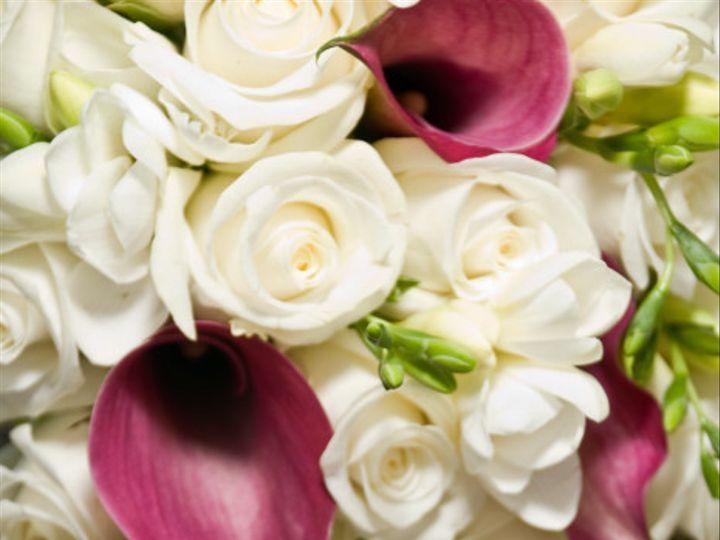 Tmx 1369535091217 Elegance San Diego, CA wedding officiant