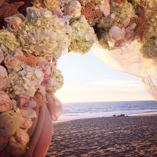 Soft and Delicate Beach Wedding Arch