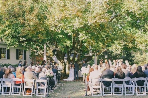 Wedding under Magnolia Tree