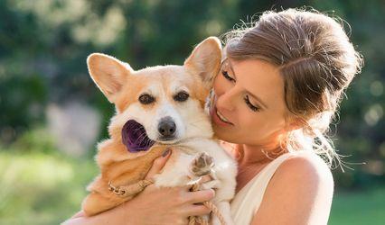 Veils & Tails Photography 1