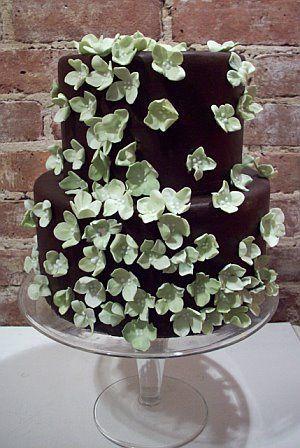 chocowithgreenhydrangeas