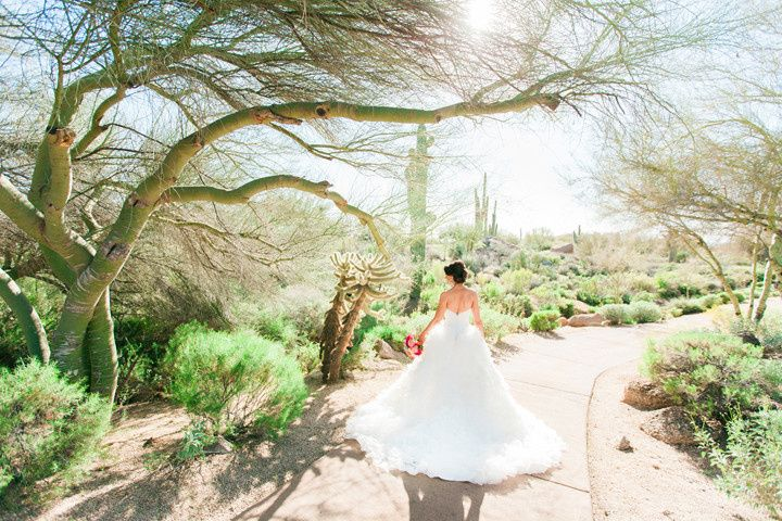 arizona wedding photographer 1 theknot