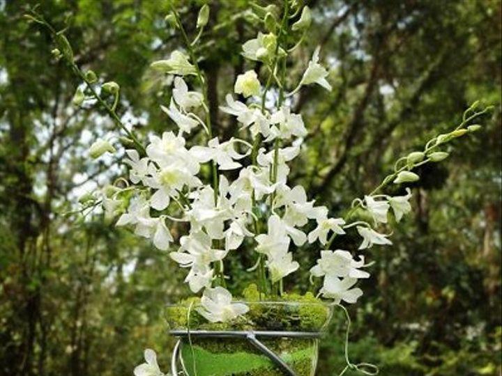 Tmx 1240008895687 BI041 Largo wedding florist