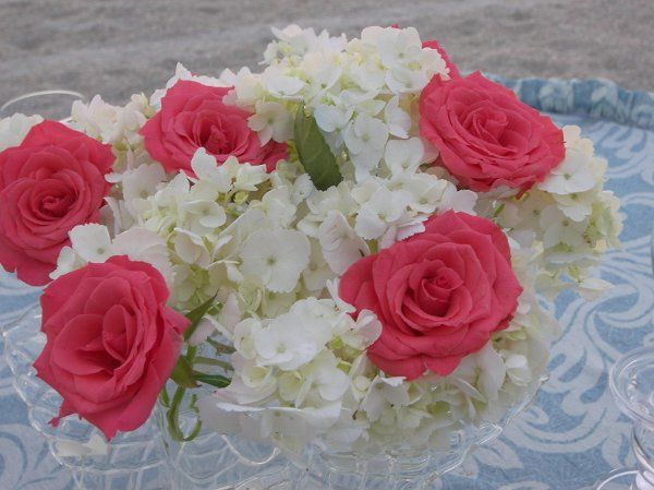 Tmx 1240009928921 1004376 Largo wedding florist