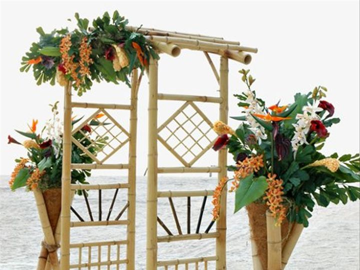 Tmx 1313025773515 BI002 Largo wedding florist