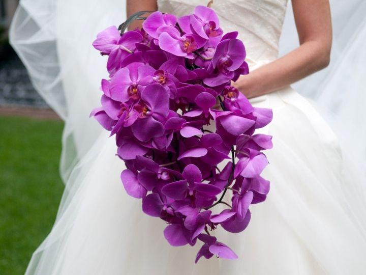 Tmx 1376599843441 Purple Phales Saint Petersburg wedding florist