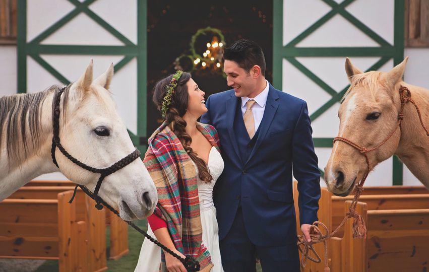 Newlyweds with horses