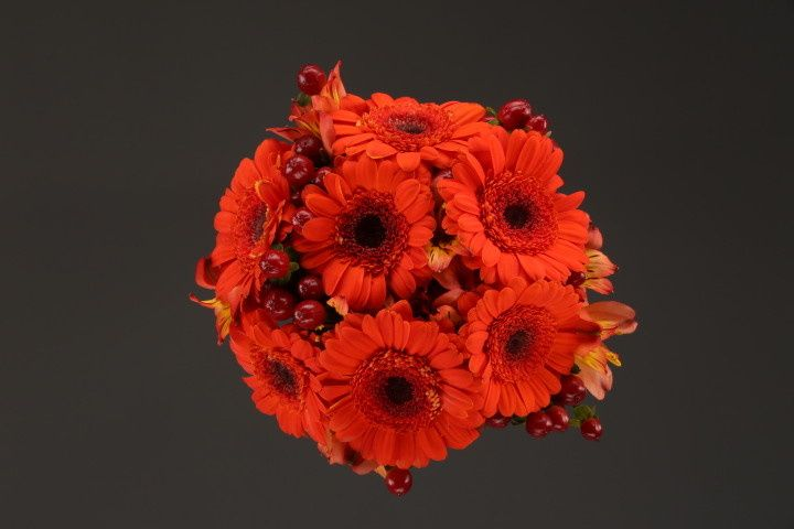 800x800 1467149898826 9958 berber mixed flower fv   copy